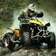 ATV/qvad/motori (9)